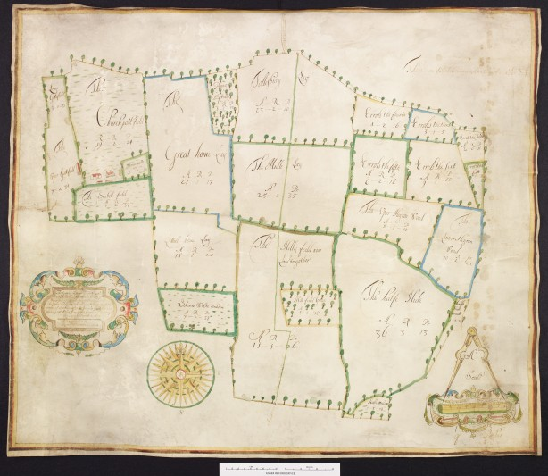 Plan of Tolleshunt D'Arcy. Courtesy of Essex Record Office.